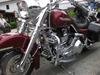 Harley_0200