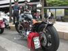 Harley_0203