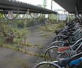 Sfukushima092