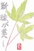 Shinryoku_0002