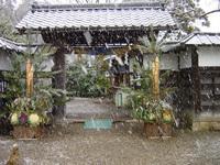 Hikone_yukigeshiki28