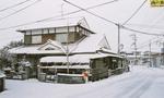 yukigeshiki051218