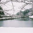 彦根城のお堀雪景色2