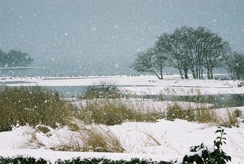 湖北町雪景色