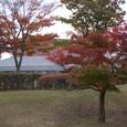 信楽陶芸の森の紅葉05