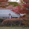 信楽陶芸の森の紅葉06